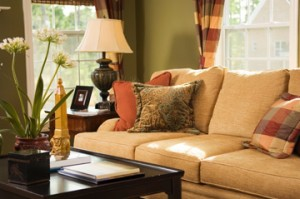 Upholstery Cleaning | Windham, NY 518-734-4469